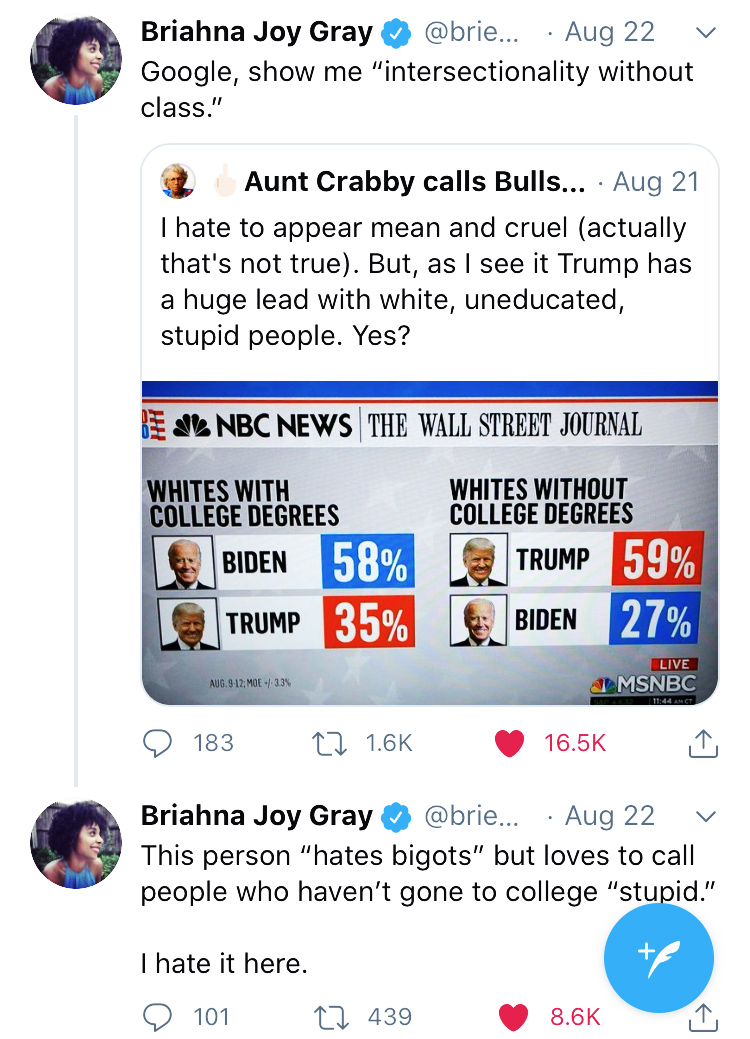 briahna joy gray 2